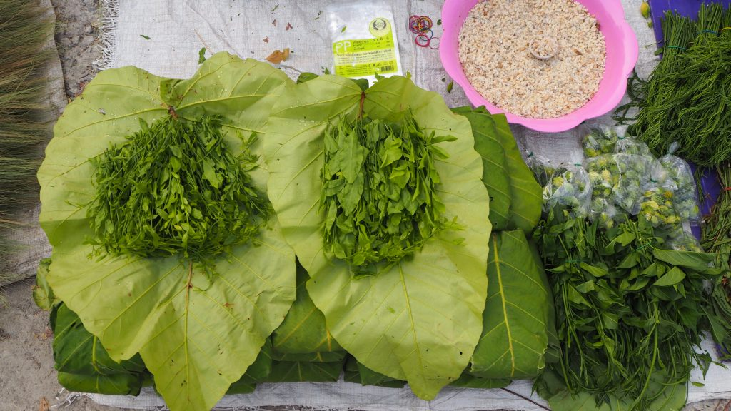 Summer delicacies; red ant eggs and Pak Wan sold in Sankayorm Market in Sansai